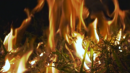 """Light My Fire"" - Short Film by Justin Danzansky and Seth Kelman"